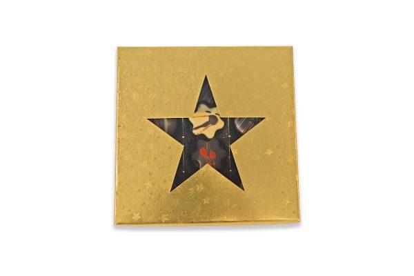 Sternpackung gold 12er